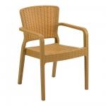 Antares Armchair Wood - Tilia
